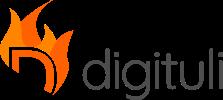 Digituli OÜ